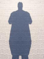 cień grubasa